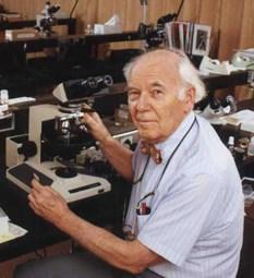 Доктор Волтер МакКрон (1916 - 2002) - дослідник Плащаниці і скептик, який стверджував, що реліквія є намальованою картиною