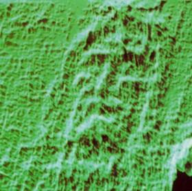 Тривимірне зображення обличчя з Плащаниці, отримане за допомогою аналізатора VP8